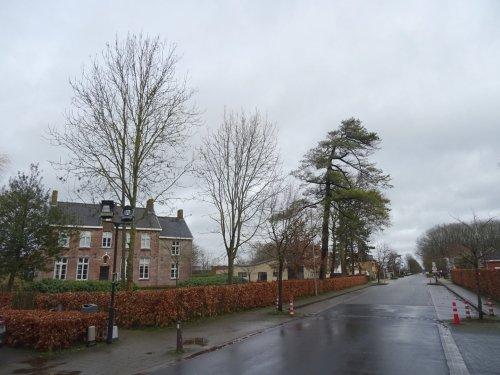Bloemendale20019