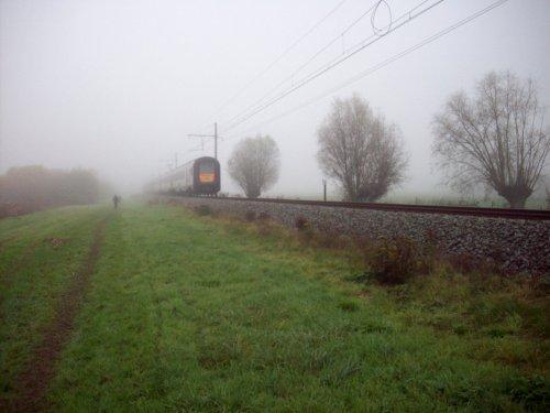 Geluveld19 008