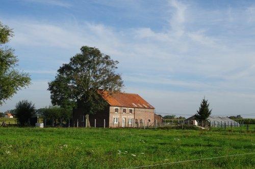 Wolvertem19 043